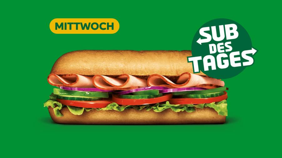 Subway Sandwich - Turkey