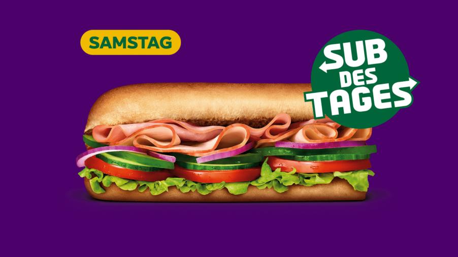 Subway Sandwich - Turkey & Ham