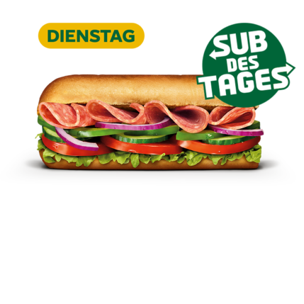 Subway Sandwich - Salami